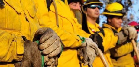 Brigadas de Emergencias: Formación y entrenamiento